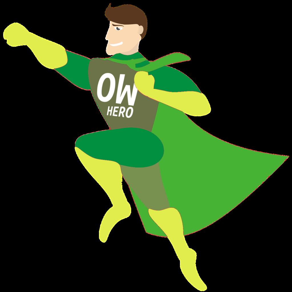 Open World Hero