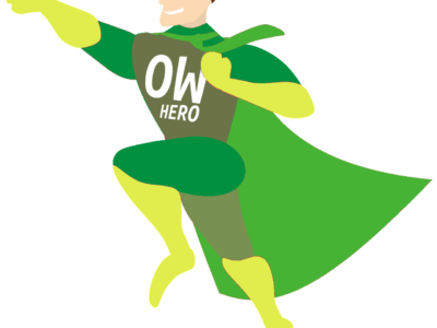 Open World Hero